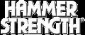 Hammer-Strength-Logo-NBG-B-300x127